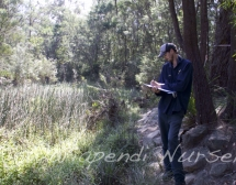 Undertaking a vegetation assessment for a riparian zone