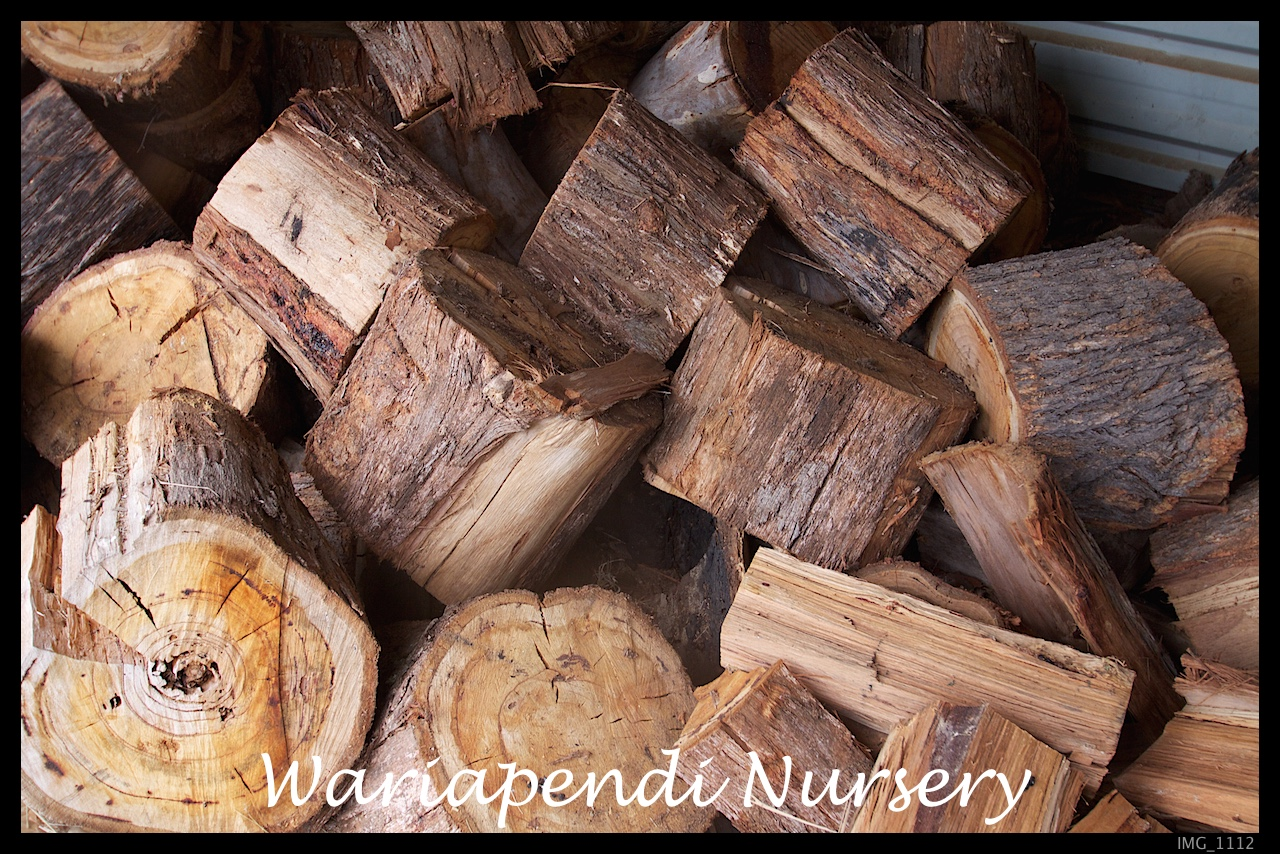 Trees For Timber And Firewood Native Plant And