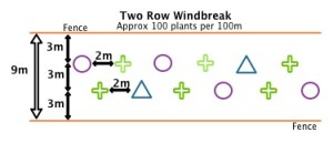 Two Row Windbreak specification