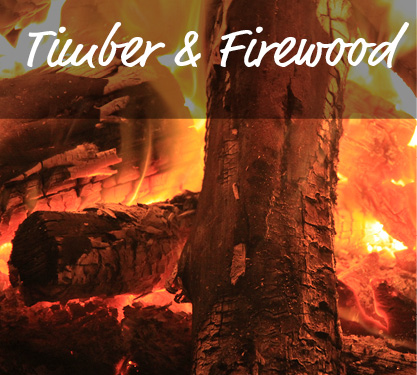 Timber and Firewood