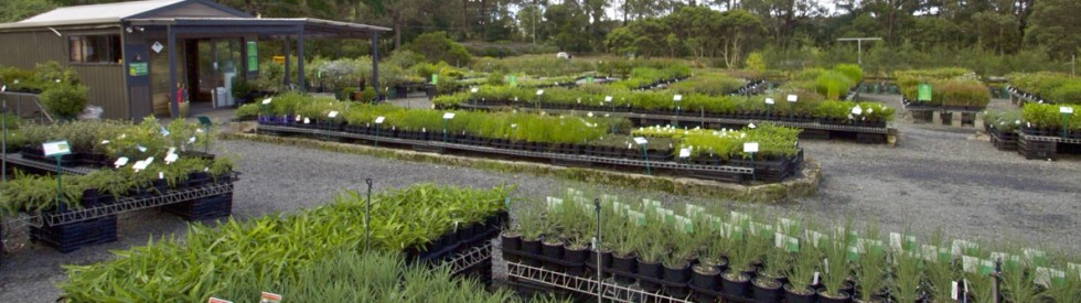 Retail Nursery stocking 1,000's of plants in a range of sizes